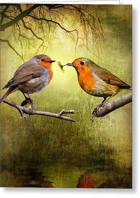 Stream Digital Greeting Cards - Robin Gifts Greeting Card by Julie L Hoddinott