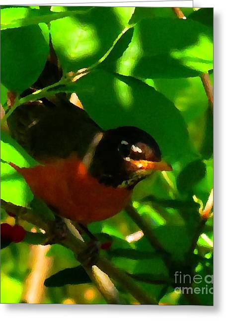 Robin Peeping Through Leaves Faux Oil Greeting Card by Rrrose Pix