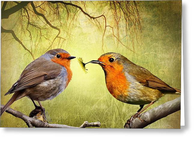Stream Digital Art Greeting Cards - Robin Presents Greeting Card by Julie L Hoddinott