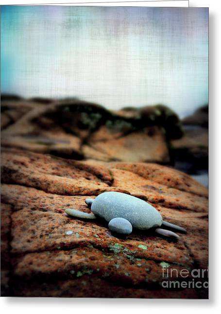 Minnesota Grown Photographs Greeting Cards - Rock Art Greeting Card by Perry Webster