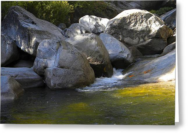 Dappled Light Greeting Cards - Rock Creek Greeting Card by Frank Wilson