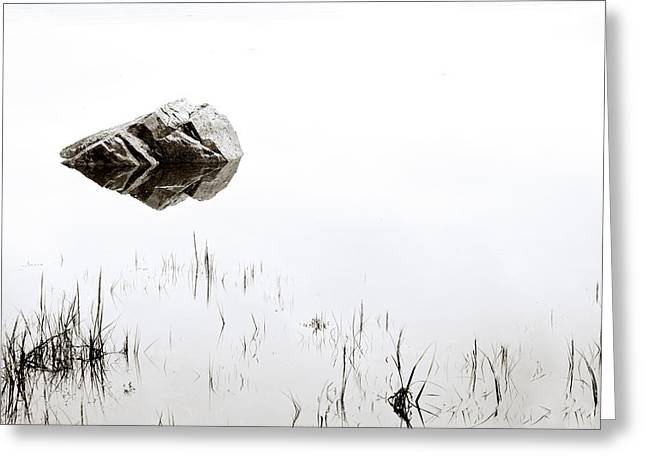 Pond.  Greeting Cards - Rock in the Water Greeting Card by Steve Gadomski