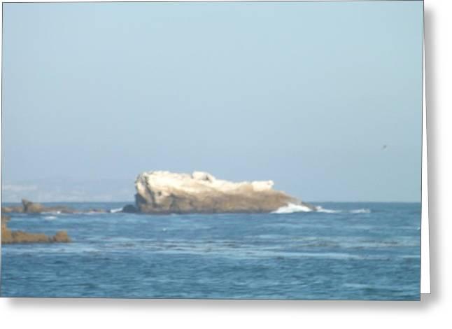 Rock On The Water Greeting Card by Jamie Diamond