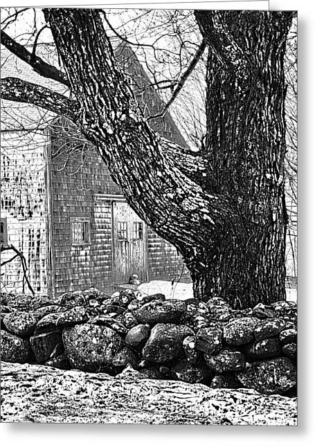 Barn Pen And Ink Greeting Cards - Rock Wall  Greeting Card by Janet White