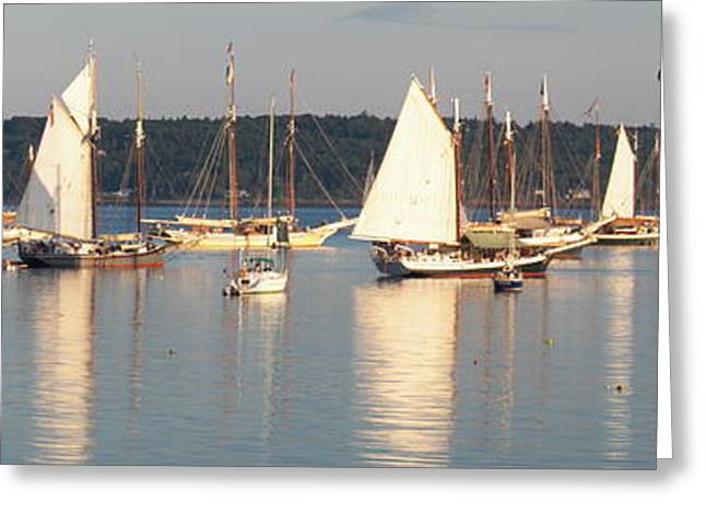Schooner Greeting Cards - Rockland Harbor Windjammers Greeting Card by L Jaye  Bell