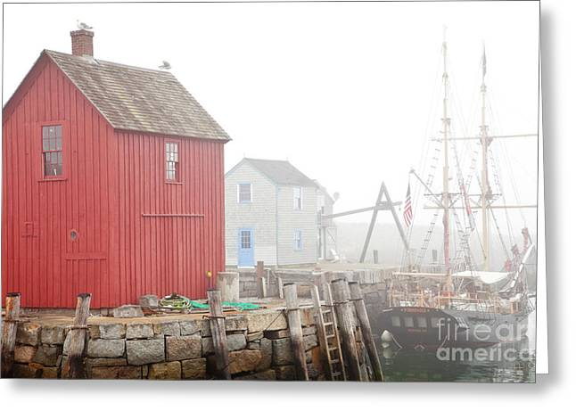 North Shore Greeting Cards - Rockport Fog Greeting Card by Susan Cole Kelly