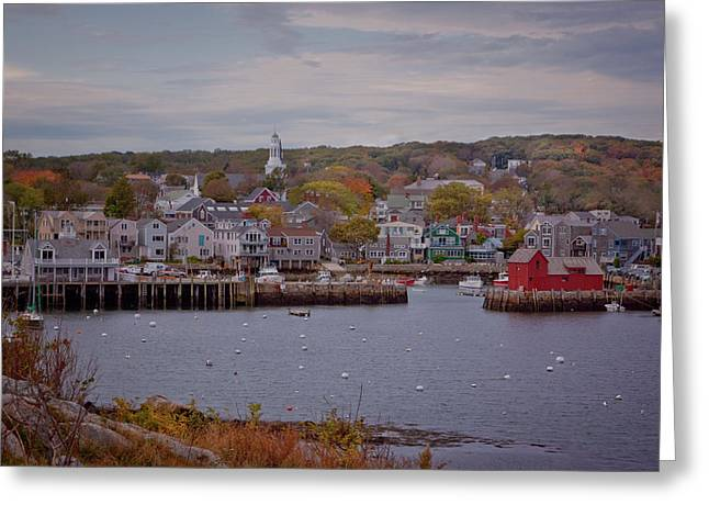Boats In Harbor Greeting Cards - Rockport Harbor Greeting Card by Tom Singleton