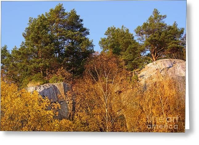 Autumn Scene Photographs Greeting Cards - Rocky Autumn Sun Greeting Card by Lutz Baar