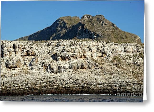 Rocky Cliffs Of Wolf Island Greeting Card by Sami Sarkis