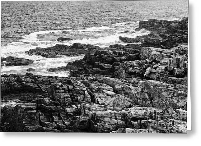 Maine Shore Greeting Cards - Rocky coastline II - black and white Greeting Card by Hideaki Sakurai