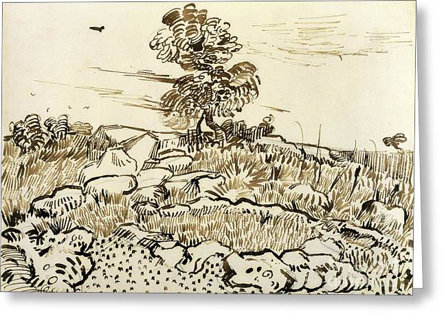 Rocky Ground at Montmajour Greeting Card by Vincent van Gogh