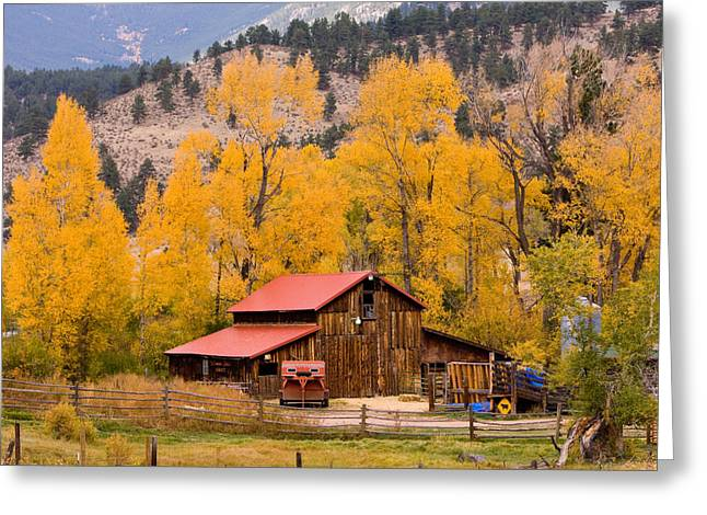 Striking Images Greeting Cards - Rocky Mountain Autumn Ranch Landscape Greeting Card by James BO  Insogna