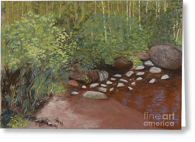 Rocky Mountain Creek Greeting Card by Ginny Neece
