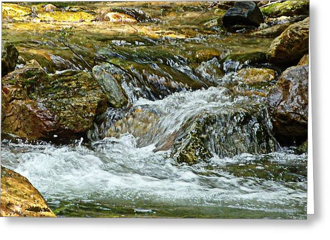 Rocky River Greeting Card by Lydia Holly