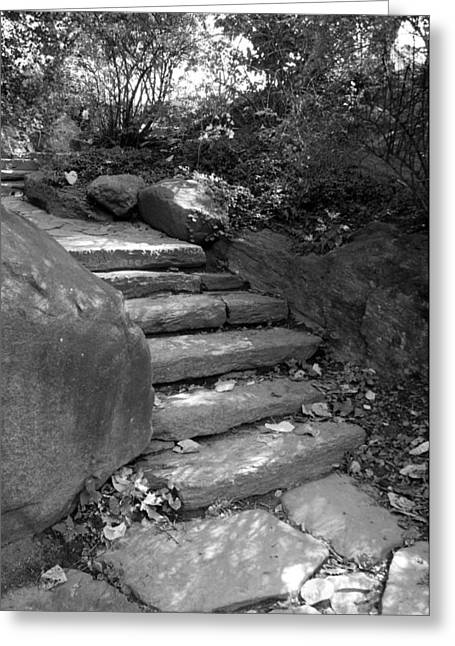 Natral Greeting Cards - ROCKY STEPS in BLACK AND WHITE Greeting Card by Rob Hans