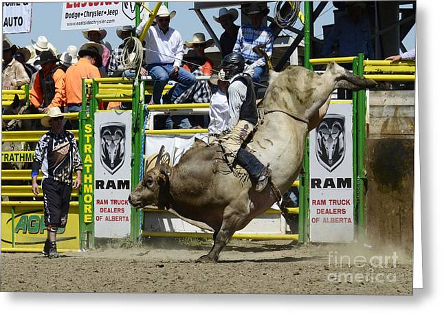 Western Life Greeting Cards - Rodeo Bull Riding Star Greeting Card by Bob Christopher