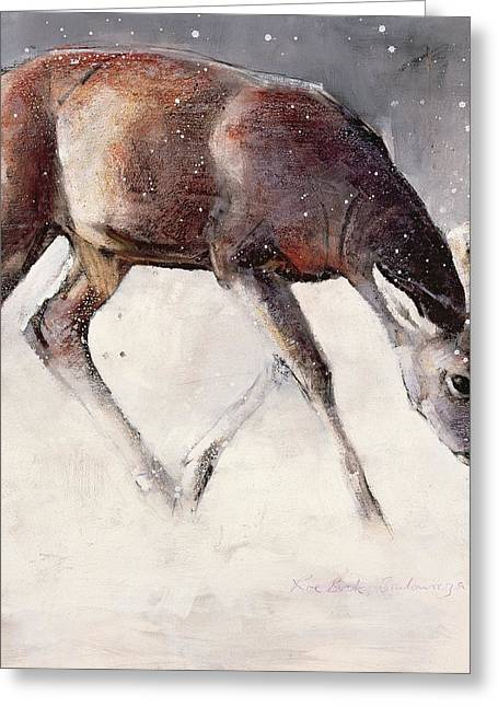 Grazing Snow Greeting Cards - Roe Buck - Winter Greeting Card by Mark Adlington