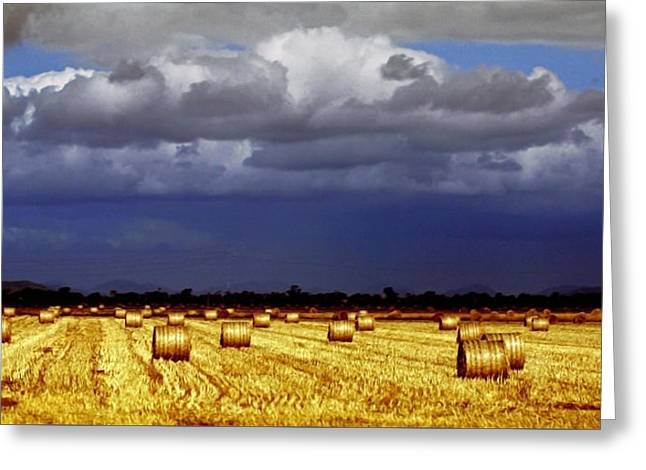 Hay Bales Photographs Greeting Cards - Rolling On Greeting Card by Holly Kempe