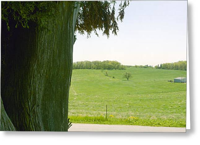 Farmers Field Greeting Cards - Rolling Wisconsin Greeting Card by Jan Faul