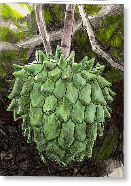 Snotfruit Drawings Greeting Cards - Rollinia Greeting Card by Steve Asbell