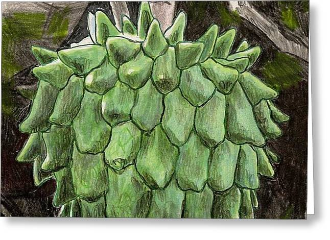 Rollinia Greeting Card by Steve Asbell