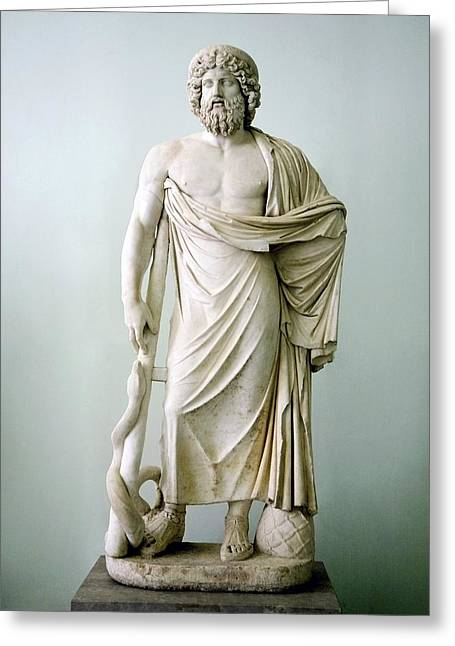 Statue Portrait Photographs Greeting Cards - Roman Statue Of Asclepius Greeting Card by Sheila Terry