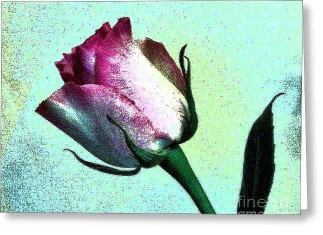 Romance Rose Greeting Card by Marsha Heiken