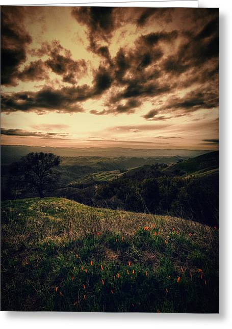 Concord Greeting Cards - Romanticizing the sunset at Mount Diablo Greeting Card by Laszlo Rekasi
