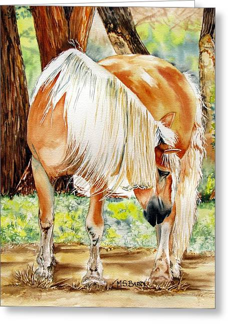 Horse Images Greeting Cards - Romeos Veil Greeting Card by Maria Barry