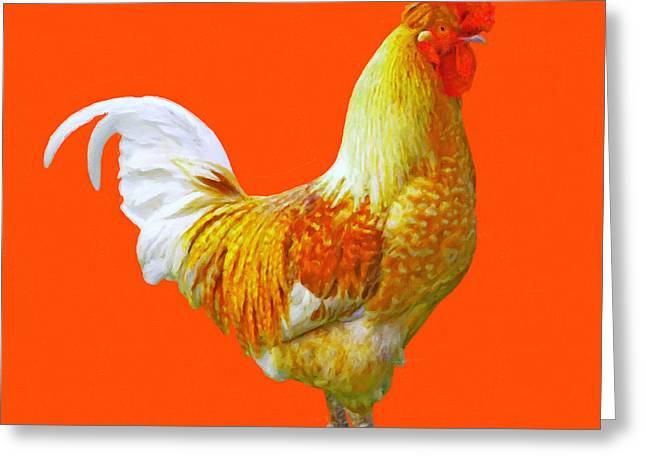 Clucking Greeting Cards - Rooster 3 - Painterly Greeting Card by Wingsdomain Art and Photography