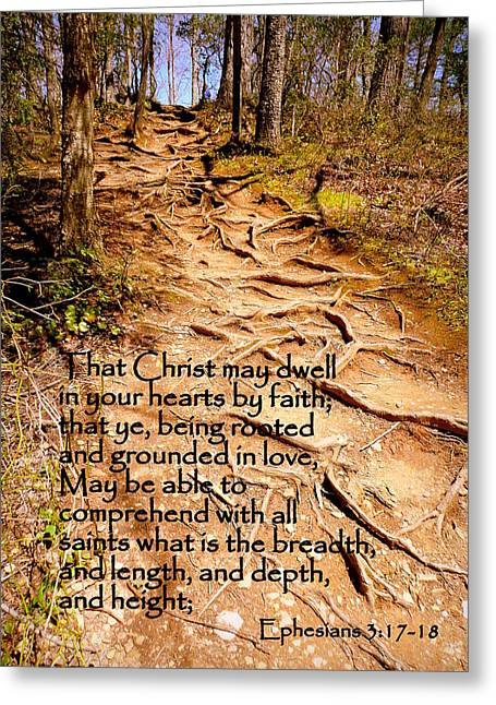 Rooted Path With Scripture Greeting Card by Cindy Wright