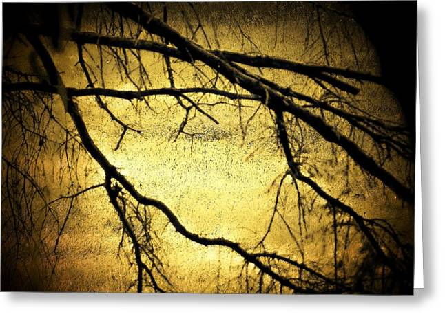 Roots At Night Greeting Card by Michael L Kimble