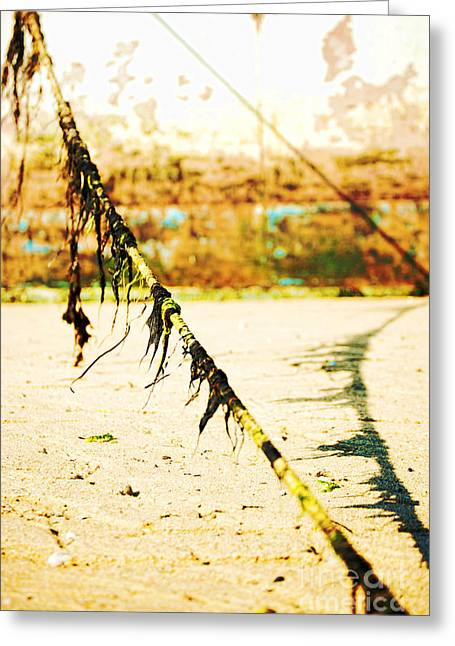 Provincetown Greeting Cards - Rope Greeting Card by HD Connelly