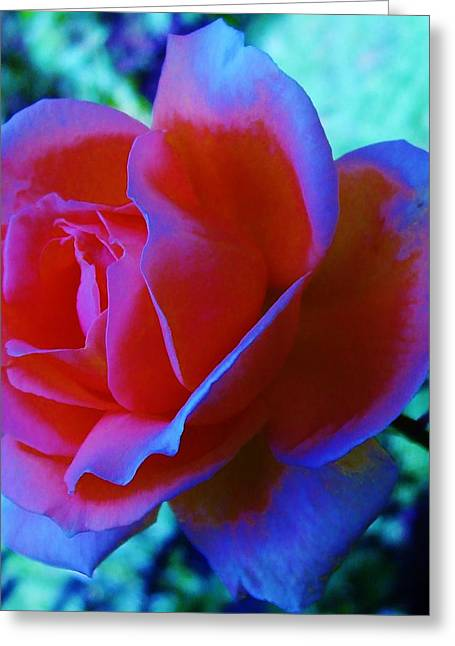 Michel Croteau Greeting Cards - Rosablue Greeting Card by Michel Croteau