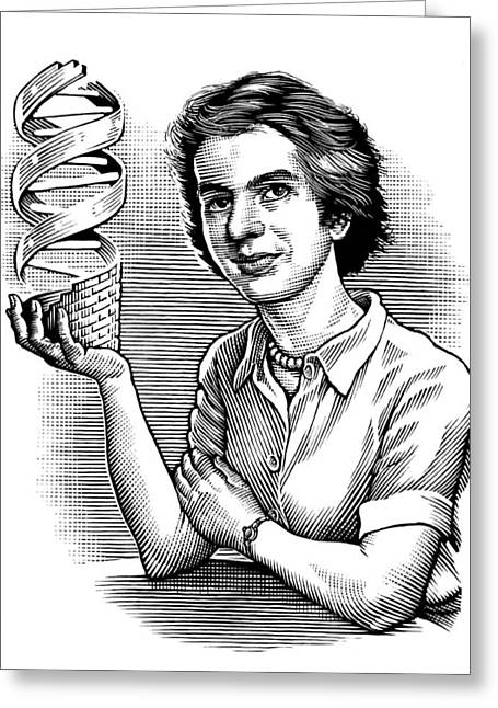 Dna Model Greeting Cards - Rosalind Franklin, British Chemist Greeting Card by Bill Sanderson