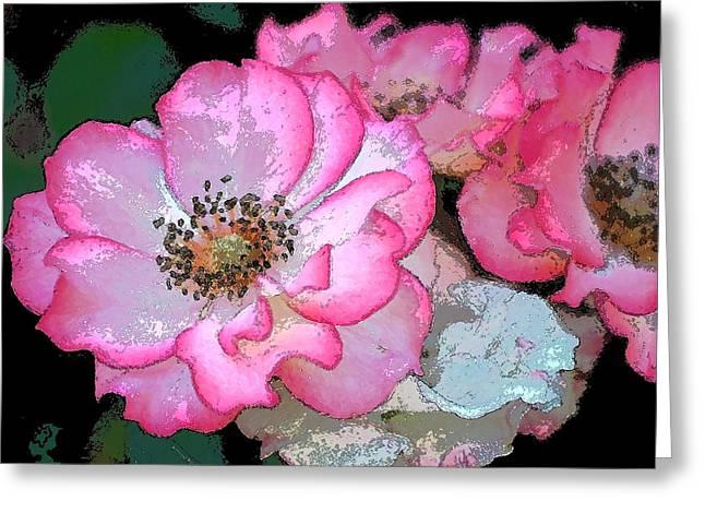 Rose 129 Greeting Card by Pamela Cooper