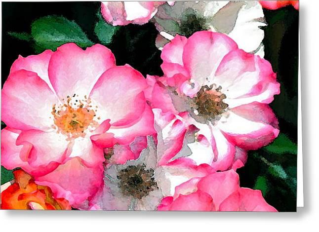 Rose 133 Greeting Card by Pamela Cooper