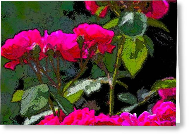 Rose 135 Greeting Card by Pamela Cooper