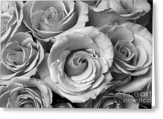 Celebration Art Print Greeting Cards - Rose Bouquet in Black and White Greeting Card by James BO  Insogna