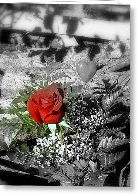 Rose Greeting Card by Cathyzcreations  Cathy Randall