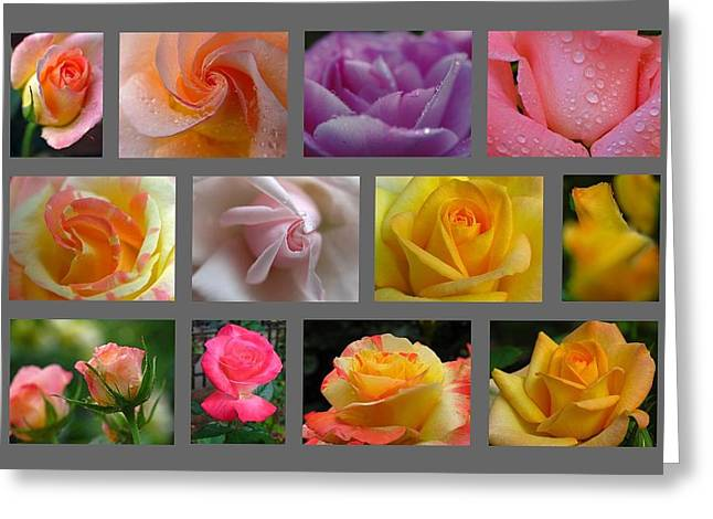 Floral Artwork Greeting Cards - Rose Fine Art Collection Greeting Card by Juergen Roth