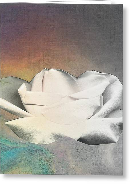 Visionary Artist Greeting Cards - Rose Floating Greeting Card by George  Page