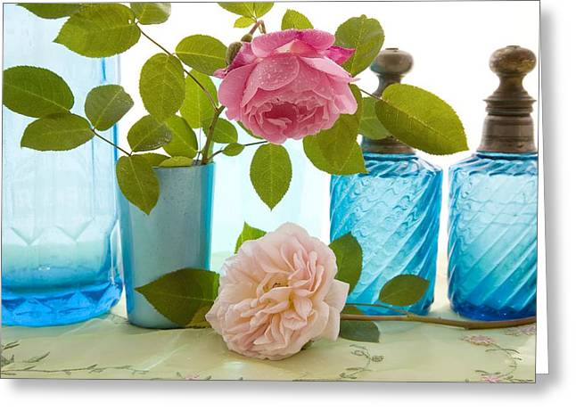 Rosa Sp. Greeting Cards - Rose Flowers Greeting Card by Erika Craddock