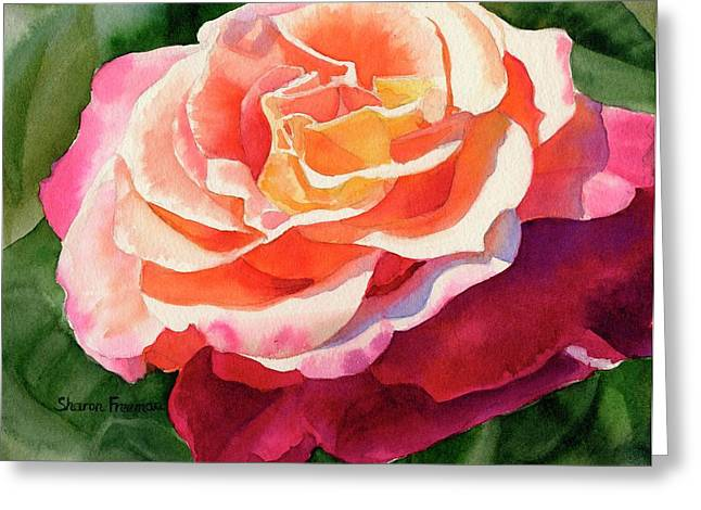 Orange Rose Greeting Cards - Rose Fringed with Red Petals Greeting Card by Sharon Freeman