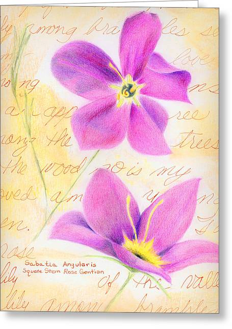 Linda Pope Greeting Cards - Rose Gentian Greeting Card by Linda Pope