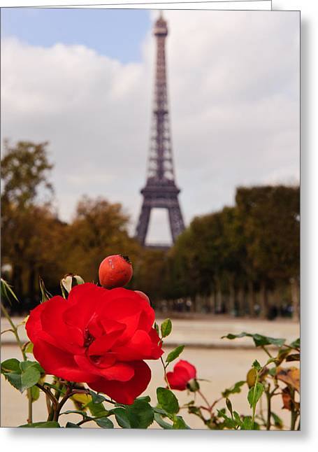 Puddle Iron Greeting Cards - Rose in Paris Greeting Card by Charel Schreuder