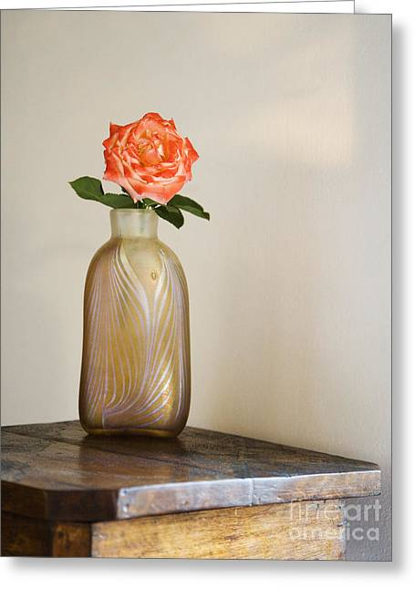 Glass Vase Greeting Cards - Rose in Vase Greeting Card by Andersen Ross