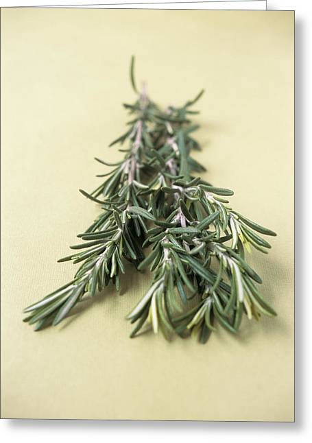 Rosmarinus Officinalis Greeting Cards - Rosemary Greeting Card by Veronique Leplat