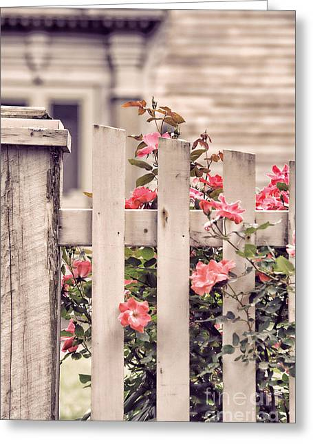 Deerfield Greeting Cards - Roses At The Gate Greeting Card by HD Connelly