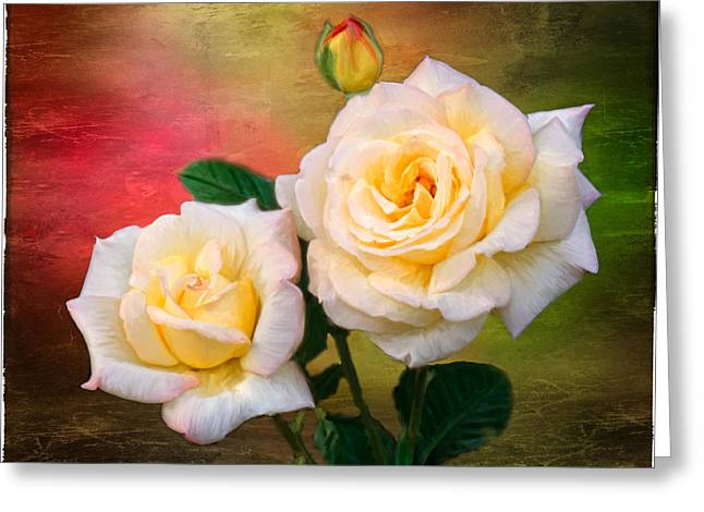 Texture Flower Greeting Cards - Roses Greeting Card by Fred LeBlanc